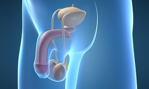 Estrechez (Estenosis) de uretra